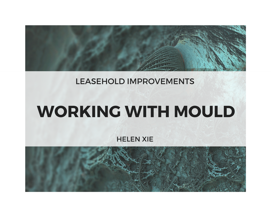 18.5.16 Leasehold Improvements Working with Mould.png