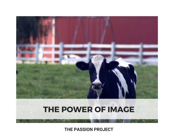 Story 3_Yves_The Power of Image.jpg